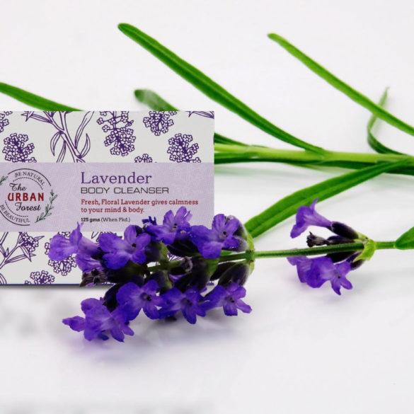 Lavender Body Cleanser